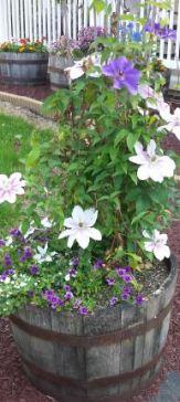 flowerbarrel